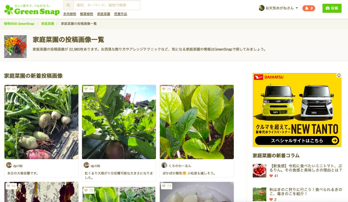 f:id:Mt_vegetable:20191208131548p:plain