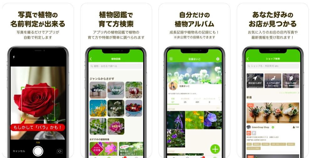 f:id:Mt_vegetable:20191208134827p:plain