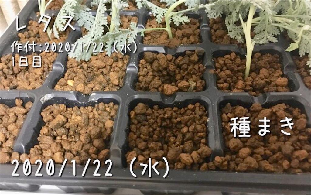 f:id:Mt_vegetable:20200130110719j:image