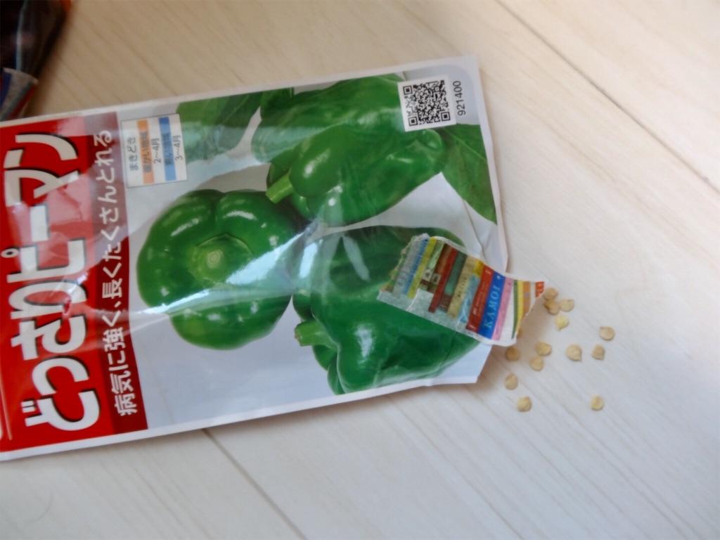f:id:Mt_vegetable:20200215194405j:image