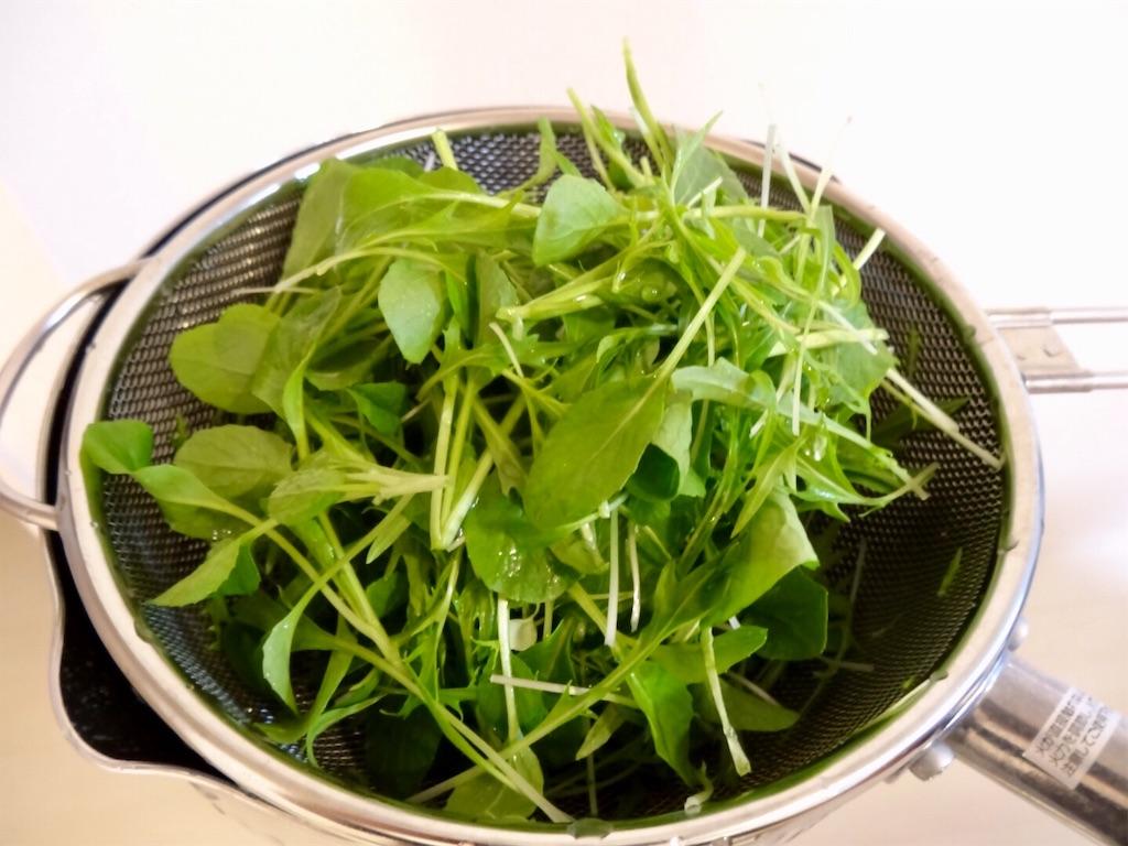 f:id:Mt_vegetable:20200223003713j:image
