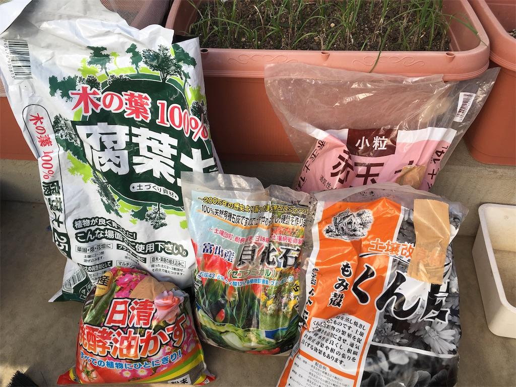 f:id:Mt_vegetable:20200327172459j:image