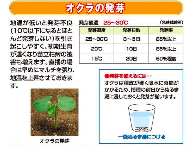 f:id:Mt_vegetable:20200526125017p:plain