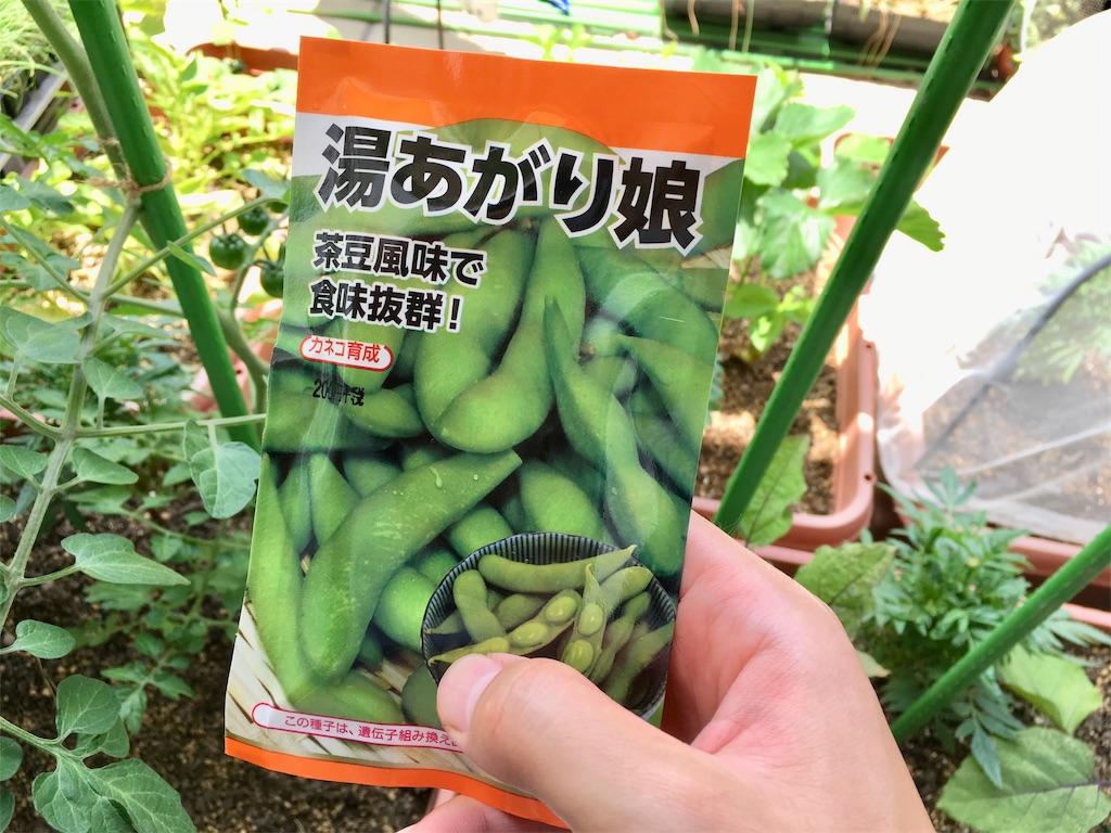 f:id:Mt_vegetable:20200530173906j:image