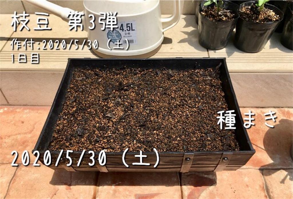 f:id:Mt_vegetable:20200530173938j:image