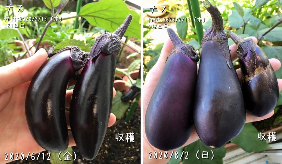 f:id:Mt_vegetable:20200802215832p:plain