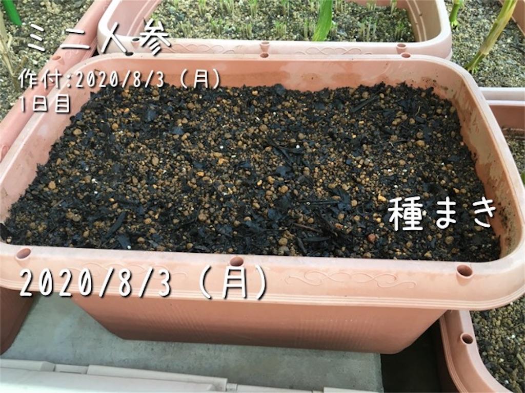 f:id:Mt_vegetable:20200803211322j:image