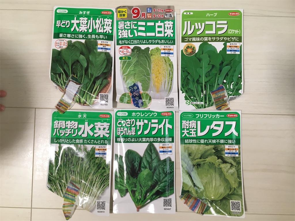 f:id:Mt_vegetable:20200809210856j:image