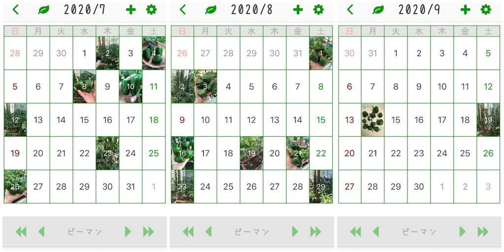 f:id:Mt_vegetable:20200920155058j:image