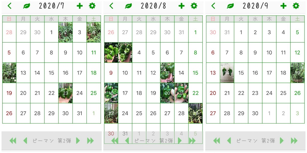 f:id:Mt_vegetable:20200920155103j:image