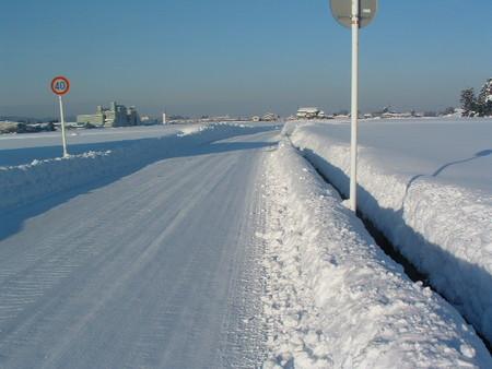 今年一番の雪景色!