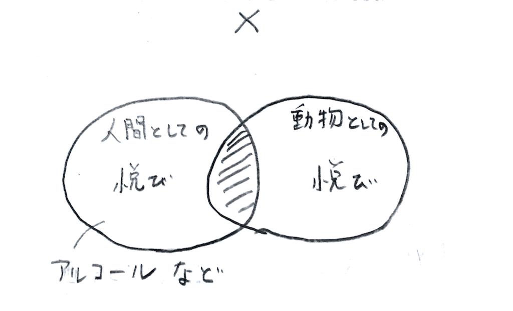 f:id:Mushiro_Hayashi:20170625115453p:image