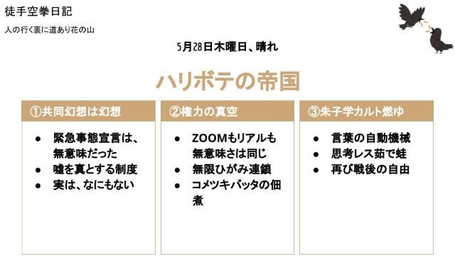 f:id:Mushiro_Hayashi:20200528205340j:image