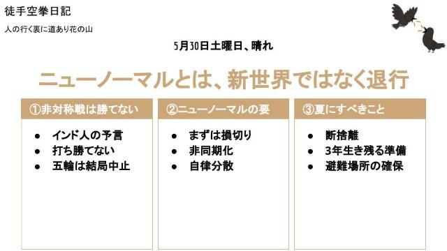 f:id:Mushiro_Hayashi:20200530224636j:image