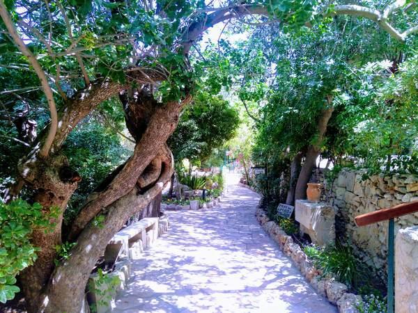 園の墓(庭園)