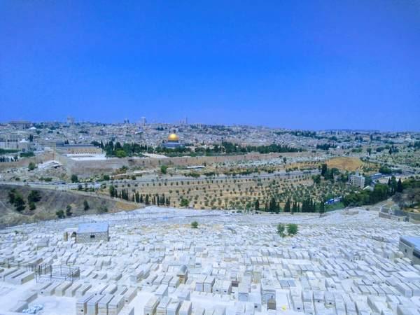 オリーブ山からの眺望