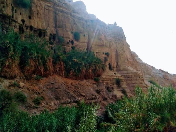エン・ゲディ国立公園の丘陵