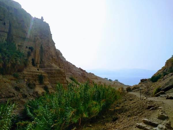 エン・ゲディ国立公園から見える絶景