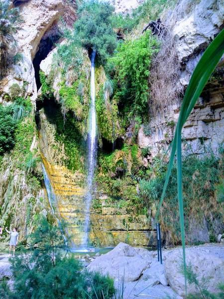 ダビデの滝