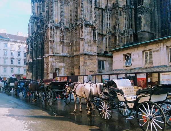 ウィーン繁華街の馬車