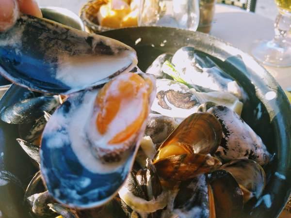 鍋に入ったムール貝