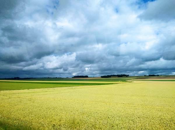 草原に浮かぶモンサンミッシェル