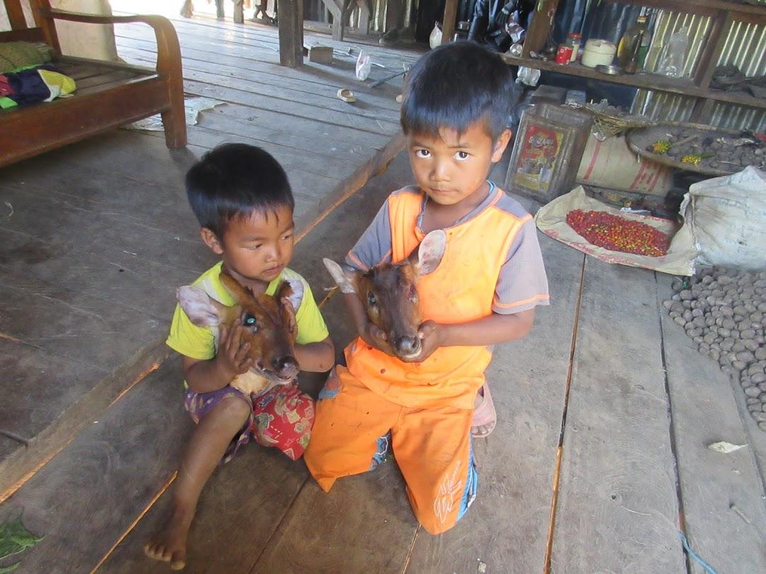 f:id:Myanmarcoffee:20201218093355j:plain