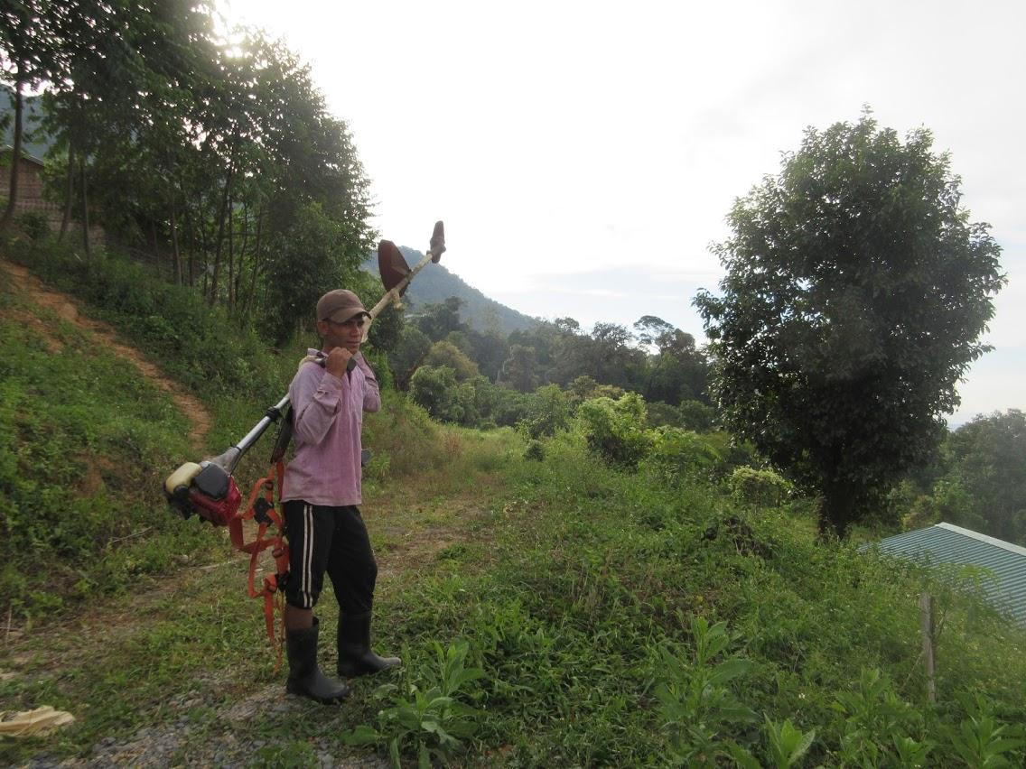 f:id:Myanmarcoffee:20210209150435j:plain