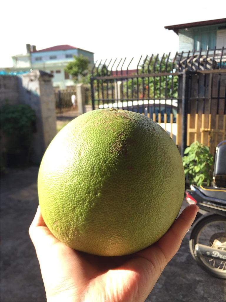 f:id:Myanmarshanlife:20161012232613j:image