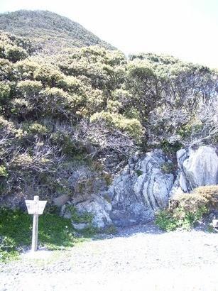 岩の上の神社への入り口@室戸岬