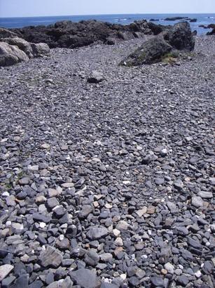 砂利の続く海岸@室戸岬