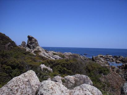 エボシ岩と海を望む@室戸岬