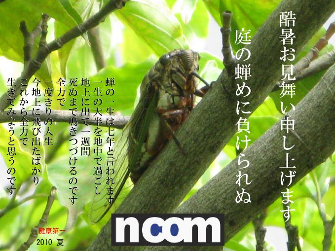 f:id:NCOM:20100726072218p:image
