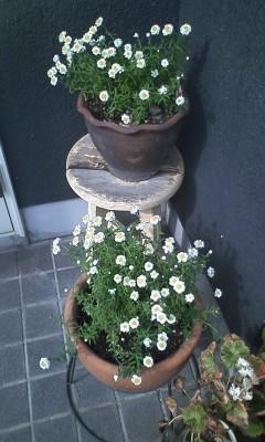 f:id:NCOM:20120323100426j:image