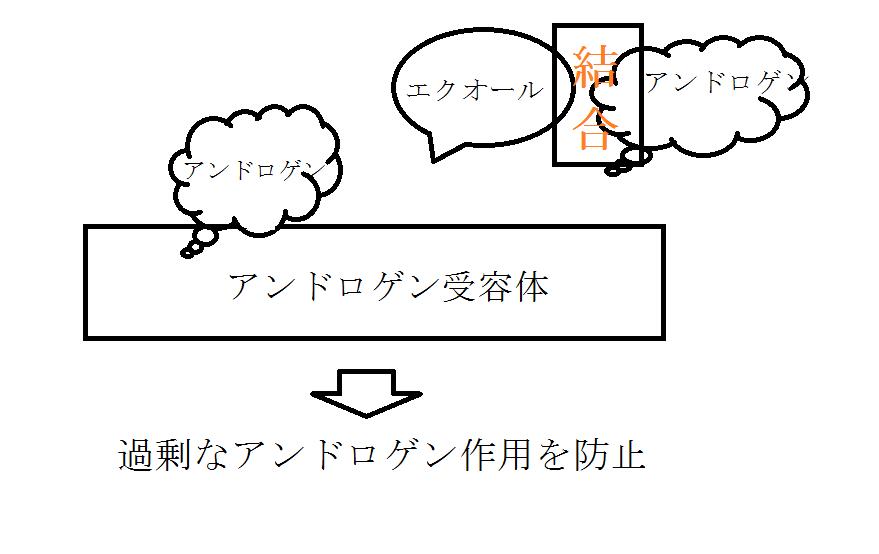 f:id:NEKOPPY:20190829102242p:plain