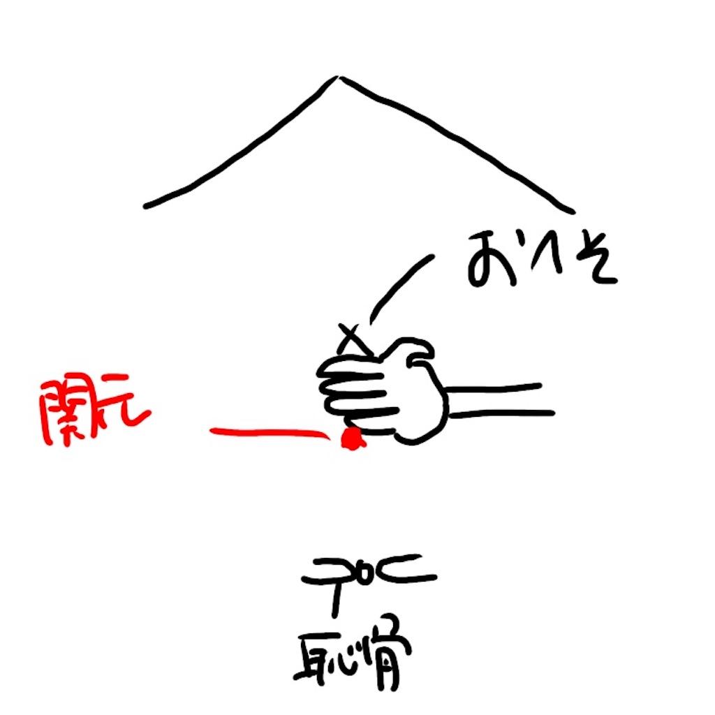 f:id:NITOKA:20170816104519j:image