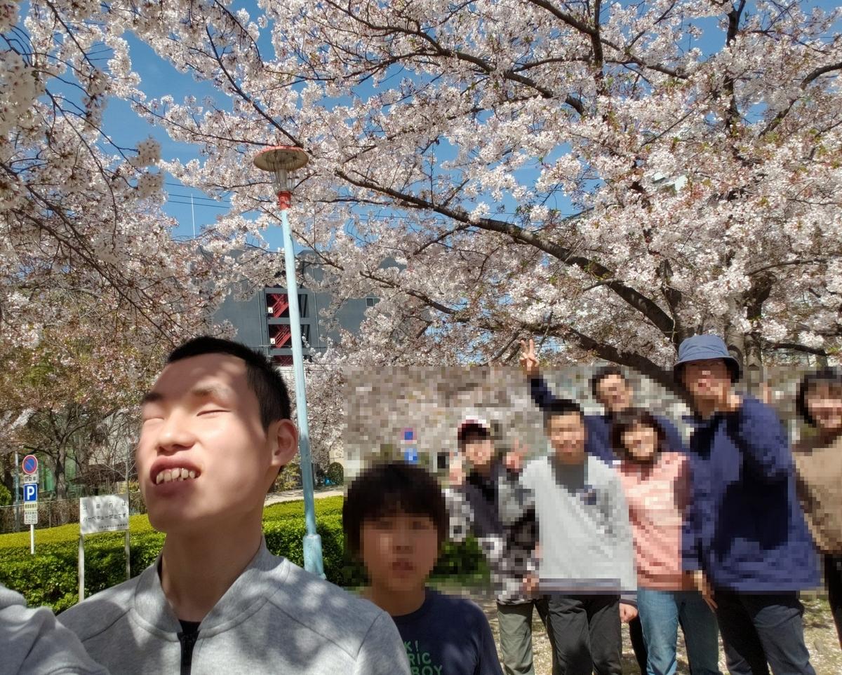満開の桜の下で、記念撮影