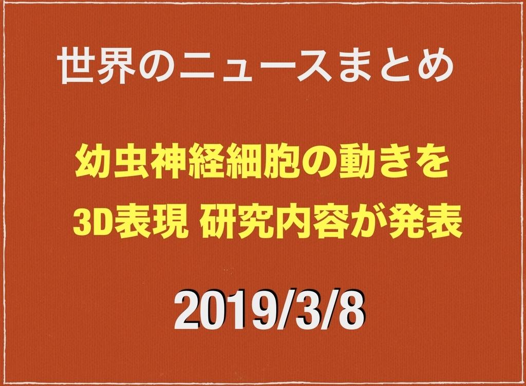 f:id:NQC49636:20190308230633j:plain