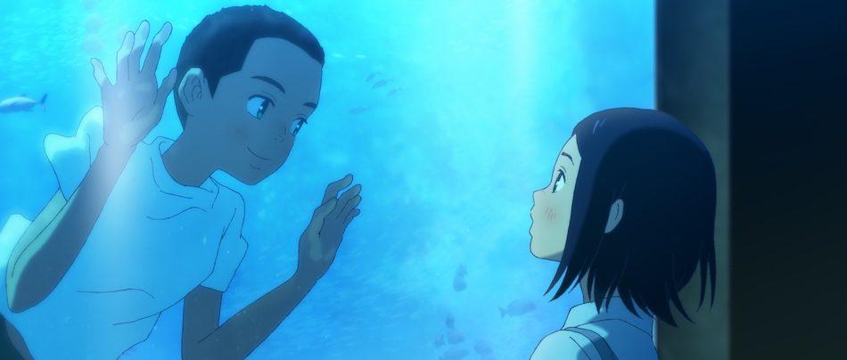 水槽の中の中にいる海と目が合う琉花
