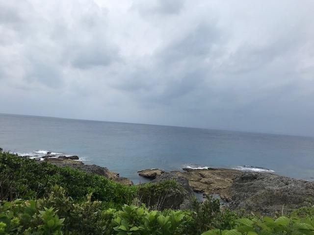 ザトウクジラがいない海岸