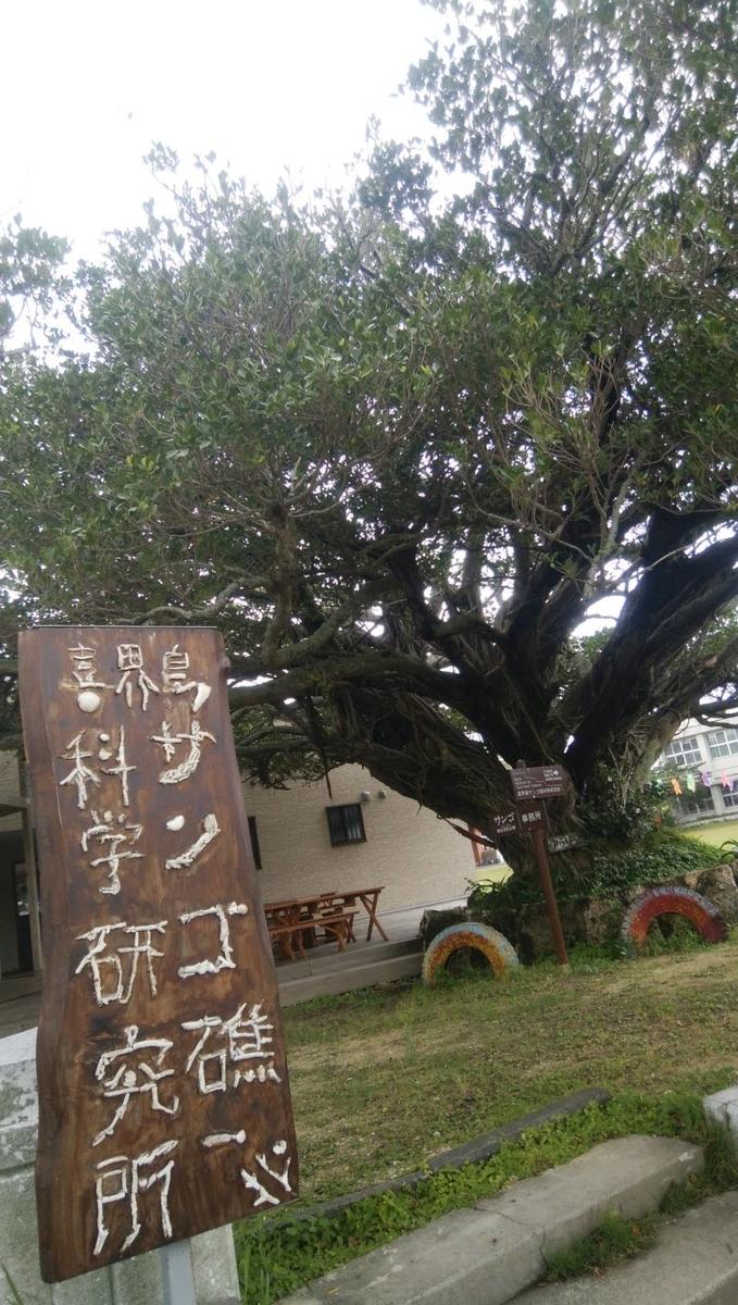 喜界島サンゴ礁科学研究所