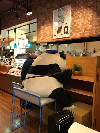 カウンターに座るパンダくんとペンギンさんのぬいぐるみ