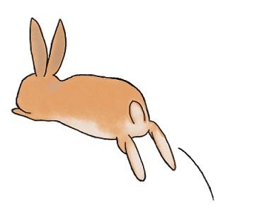 ジャンプするウサギのイラスト