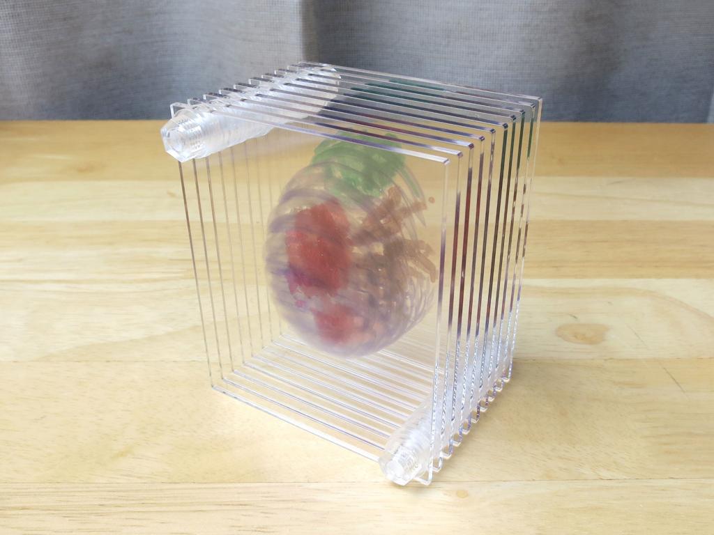 3D積層フィギュア 団子虫 開封の儀(2) あらゆる角度から紹介
