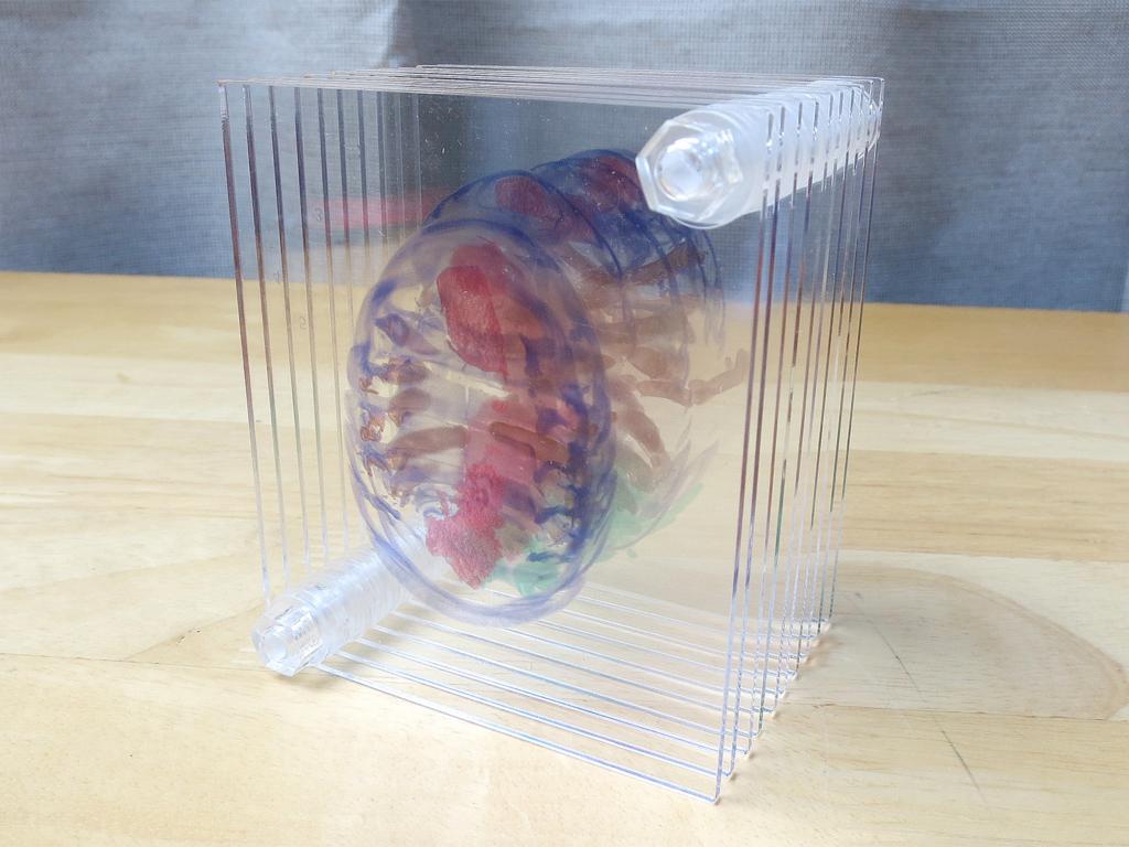 3D積層フィギュア 団子虫 ネジ 開封の儀(4) 10層→5層にした結果は!?