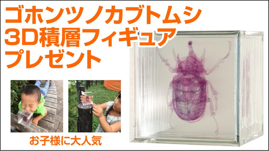 3D積層フィギュア ゴホンツノカブトムシが当たる!応募はTwitterかInstagramで