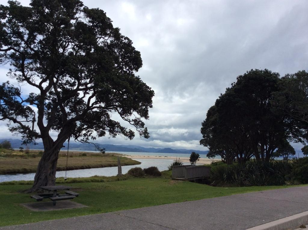 f:id:NZBLUE:20190111090517j:plain