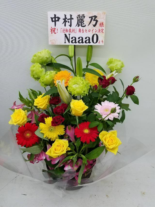 f:id:NaaaO-nogi:20190226235341j:plain