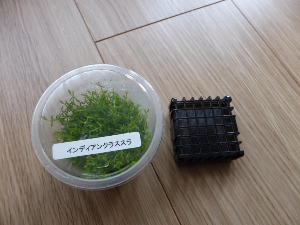 f:id:Nagoya1976:20160416130052j:plain