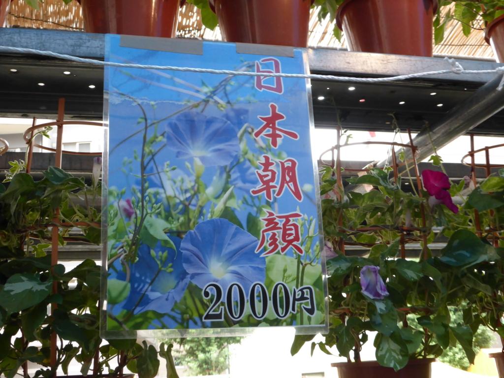f:id:Nagoya1976:20160710201641j:plain